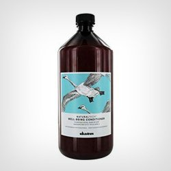 Davines Naturaltech Well- Being kondicioner 1000ml
